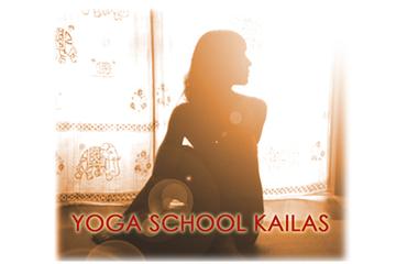 yogafan.jpg