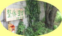 green_01.jpg